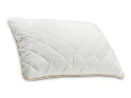 Eucalyptus Класична перница
